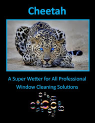 The Only Siloxane Copolymer Additive for Window Cleaning Solutions
