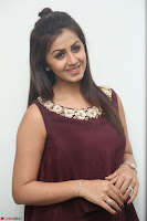 Nikki Galrani in a Brown Shining Sleeveless Gown at Nakshatram music launch ~  Exclusive 091.JPG