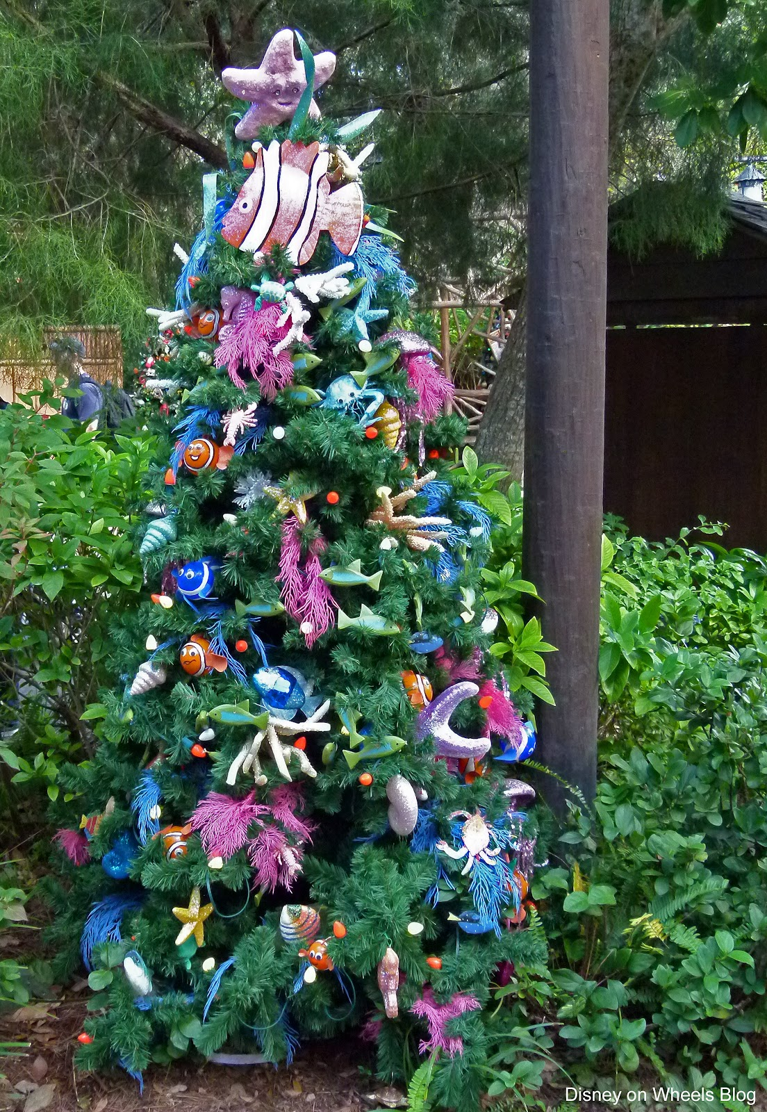 Christmas Trees At Camp Minnie Mickey Rolling With The Magic