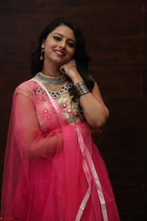 Geethanjali sizzles in Pink at Mixture Potlam Movie Audio Launch 050.JPG