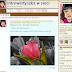 Platformy mikroblogowe - którą wybrać?
