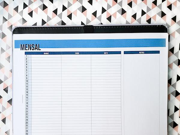 Planner 2019 #10: Mensal completo com divisões (download gratuito)