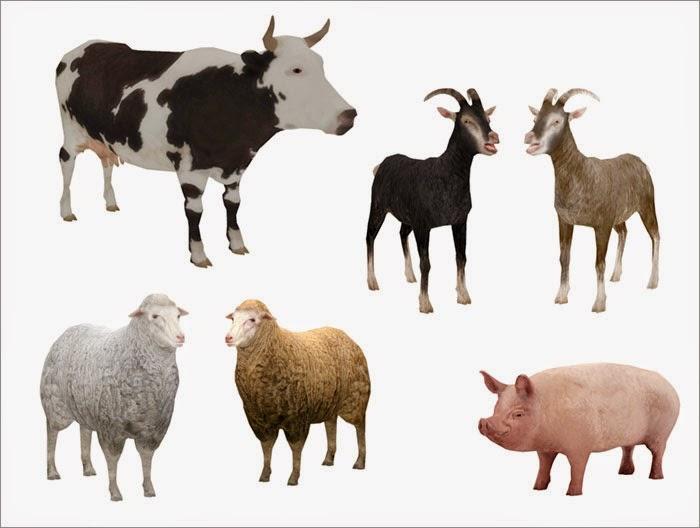 My Sims 4 Blog Decorative Animals by Severinka