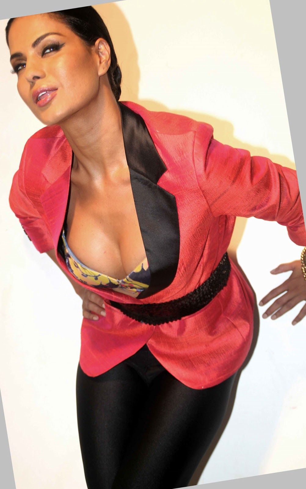Hot Desi Curves Veena Malik - Hot And Spicy Watch Video -9630