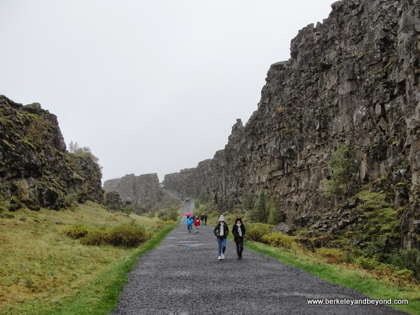where North American and Eurasian tectonic plates meet in Iceland in Thingvellir National Park