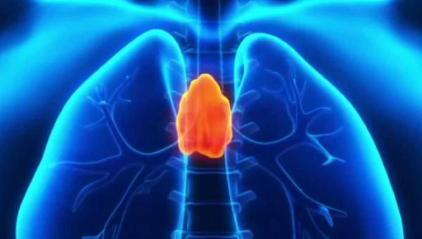 Regenerative Medicine and the Thymus Gland