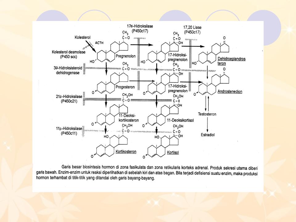 Pengertian Lipid dan Jenis-jenis Lipid