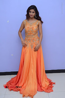 Telugu Actress Aarti Stills in Long Dress at Plus One ( 1) Audio Launch  0088.jpg