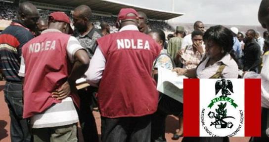 nigerian cocaine drug users arrested