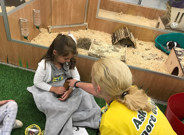 a My Pet Pals Workshop at Pets at home store