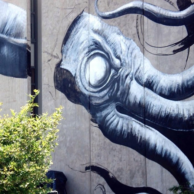 Giant Squid mural by Belgian Street Artist on the streets of Nelson, New Zealand. 2