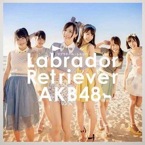 lirik AKB48 Labrador Retriever