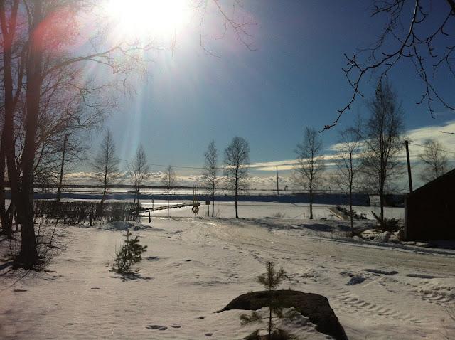 Pilvi-Leena Peltomäki