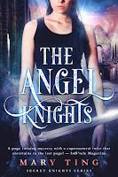 The Angel Knights on Amazon