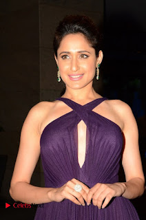 Pragya Jaiswal bra less Spicy cute Beauty at Chiranjeevi Birthday 2016 Celebrations