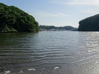 Koajiro no mori