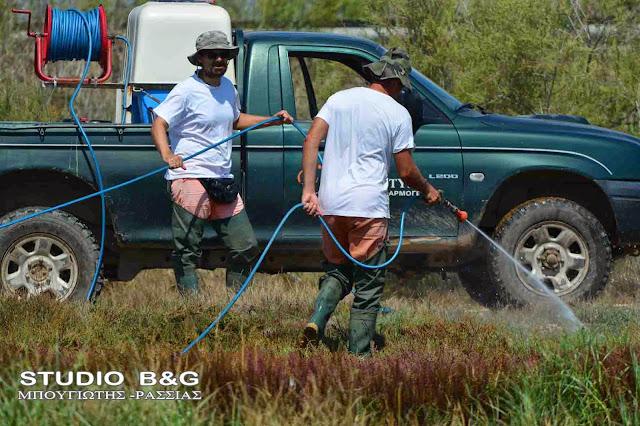 Αδιάκοπη η καταπολέμηση των κουνουπιών στο Δήμο Ναυπλιέων -  Απαραίτητα τα μέτρα προστασίας