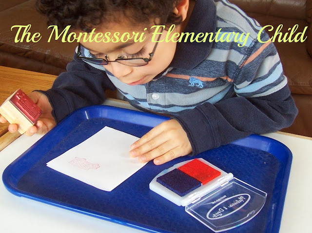 The Montessori Elementary Child