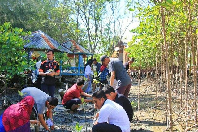 Paket Tour Wisata Menanam Mangrove Di Medan