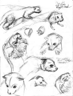 Cara Makes: Kinkajou and A Kangaroo (rat)