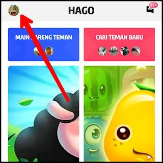 Kamu ingin mengubah nama profil di game Hago Cara Ganti Nama di Hago