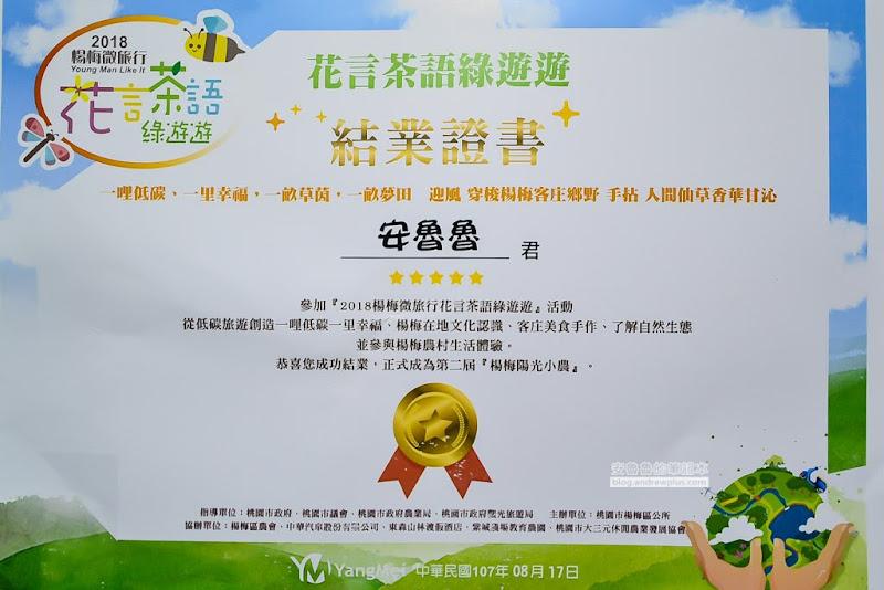 funtaoyuan-90.jpg