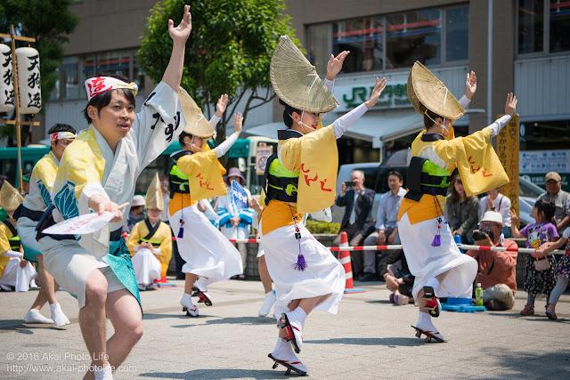 天狗連、熊本地震被災地救援募金チャリティ阿波踊り、女踊りの写真 3