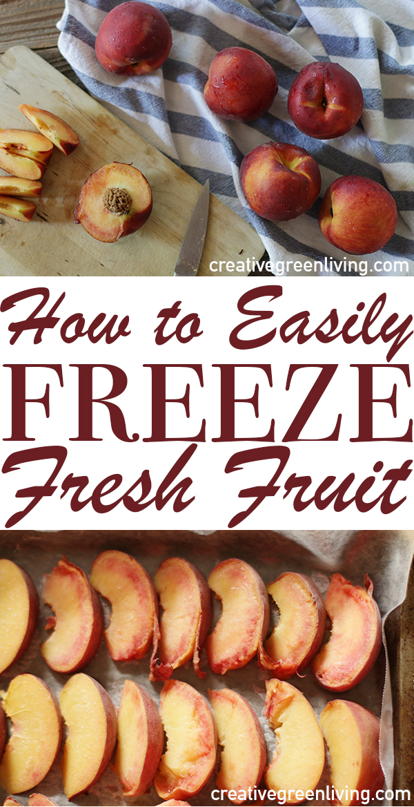 How To Preserve Fresh Fruit In The Freezer The No Sugar