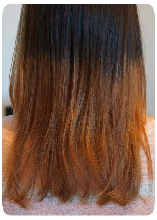 L'Oreal Preference Wild Ombre