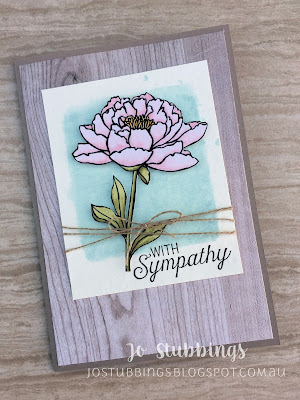 Jo's Stamping Spot - Kylie's International Blog Highlights using You've Got This by Stampin' Up!