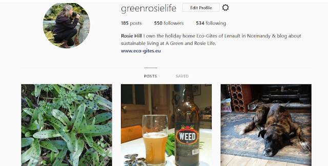 GreenRosieLife - Instagram