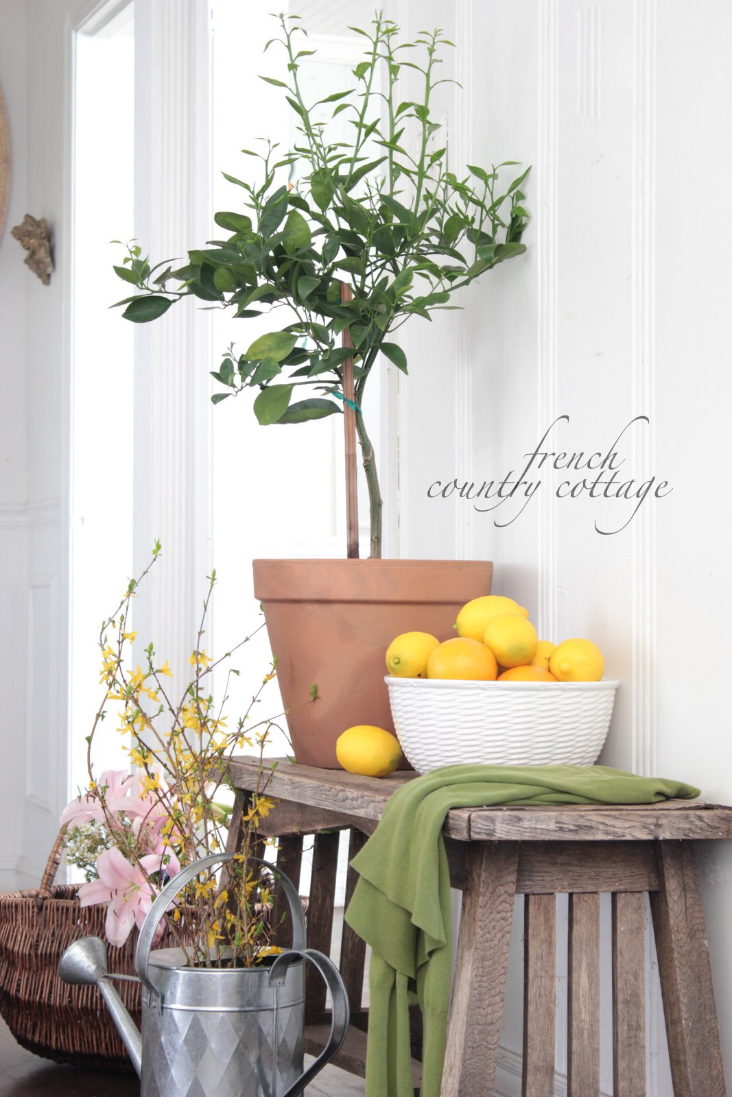 Spring Greenery Indoors French Country Cottage