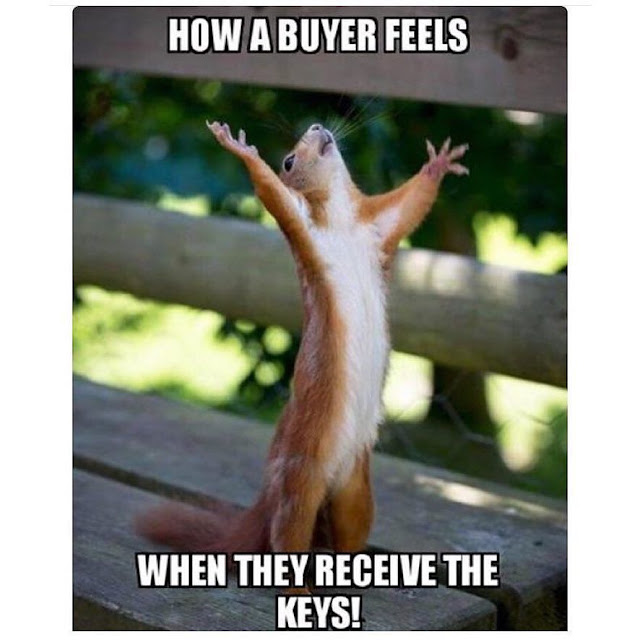 Funny Real Estate Memes - Buyers Feeling
