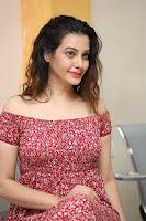 Diksha Panth in a Deep neck Short dress at Maya Mall pre release function ~ Celebrities Exclusive Galleries 110.JPG