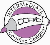 Intermediate Copic Certification