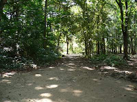 Berbagai Objek Menarik Untuk Dikunjungi Di Cagar Alam Pangandaran