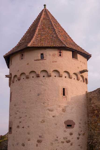 Fortifications de Bergheim (Alsace). Front nord - tour semi-circulaire.