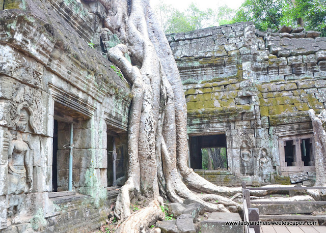 Ta Phrom temple in Tomb Raider movie