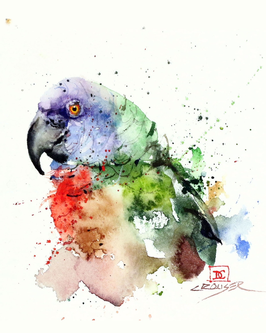 12-Parrot-Dean-Crouser-A-Love-of-the-Outdoors-Spawns-Animal-Watercolor-Paintings-www-designstack-co