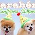 Promoção 3 anos do Confraria Cultural