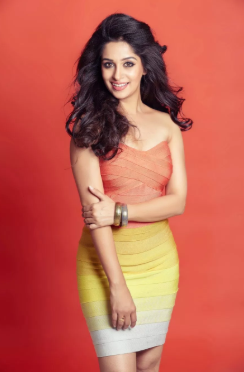 Dipika kakar Wiki | Instagram | Age | Husband | Wedding | Family | Photos | Caste