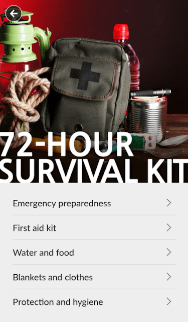 Disaster survival kit guide
