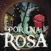 Reseña: Por una rosa