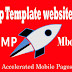 Seo  Amp Template website design