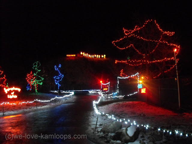 entering the light display in the park