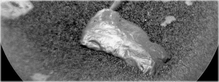 Curiosity encontra estranha rocha em Marte