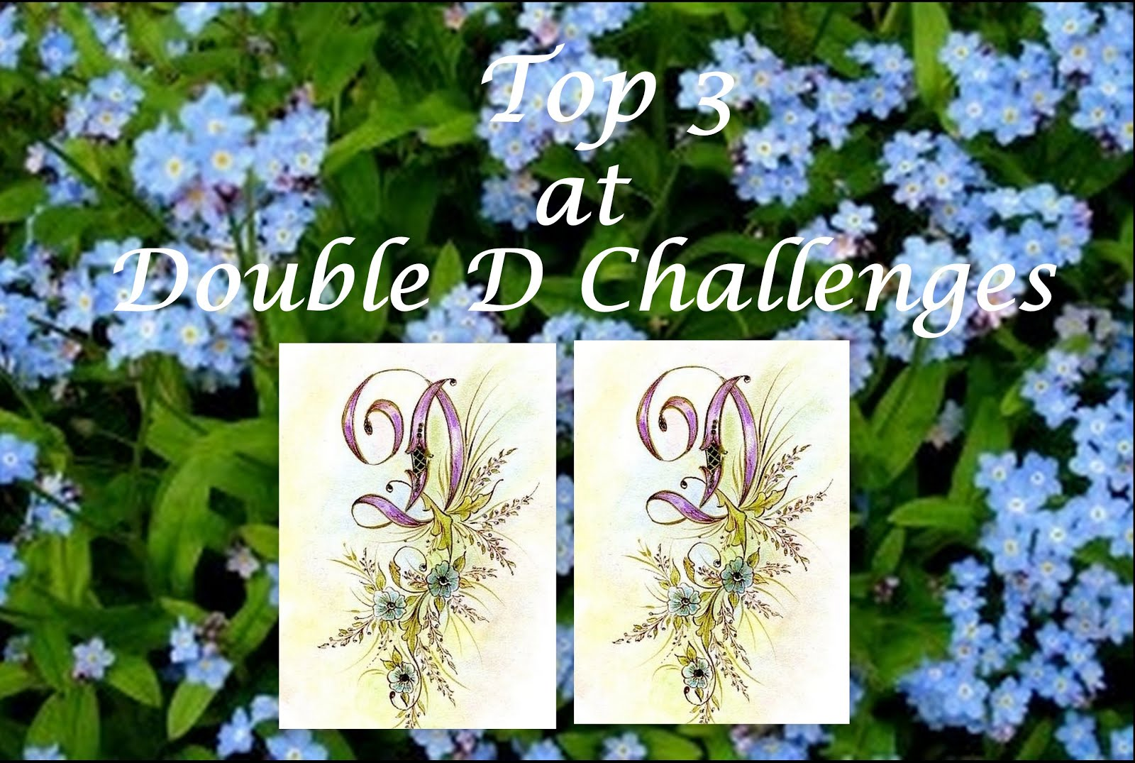 Double D Challenges - Anything Wedding
