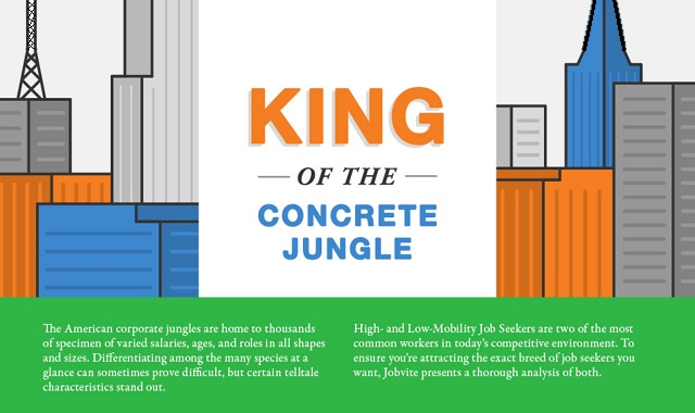 King of The Concrete Jungle
