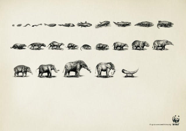 衝撃的でクリエイティブ、世界自然保護基金WWFの面白い広告 動物の進化