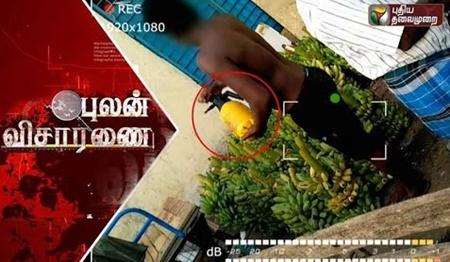 Pulan Visaranai: Healthy fruits becomes disasters | Puthiya Thalaimurai TV